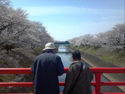 2012-04-10_10-06-51_444.jpg